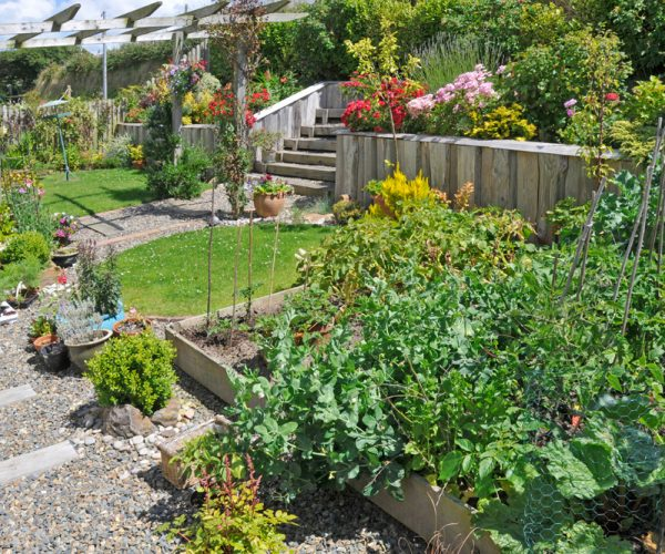 soft landscaping in pembrokeshire garden design 2
